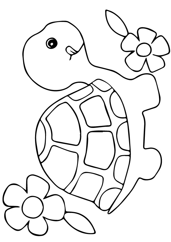 Turtle-Flowers-small