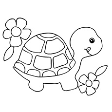 turtle with flowers side by side coloring page