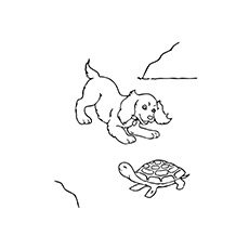 Picture of a Turtle Ginger Finds A Friend Coloring Pages
