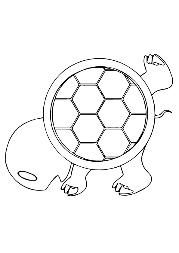 Turtle-Shell-colouring