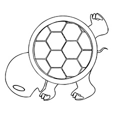 Turtle Shell Coloring Page Free