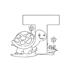 T for Turtle Image to Color