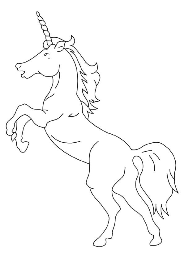 American-Unicorn