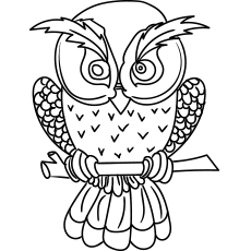 An Cute Owl Coloring Pages Free Printable