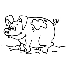 Printable Coloring Page of Angeln Saddleback Pig