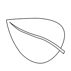 Anthurium Leaf Coloring Page