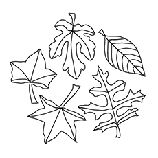 Top 20 Free Printable Leaf Coloring Pages Online