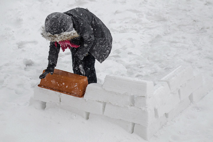 Build snow forts
