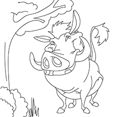 Cartoon Pumbaa Pig-16
