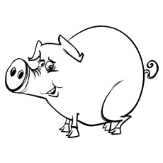 cartoon sketch of pig coloring page