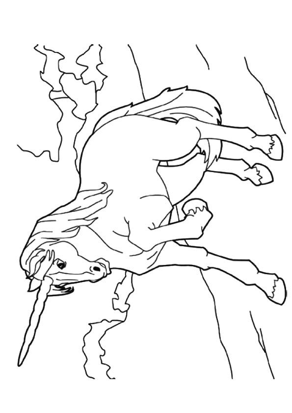 Chinese-Unicorn