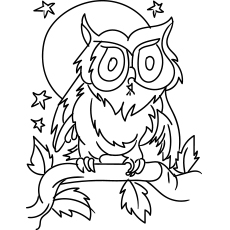 Collared Scoops Owl Coloring Page To Print