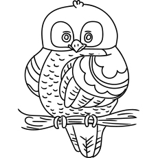 Owl Sitting on Branch Coloring Pages