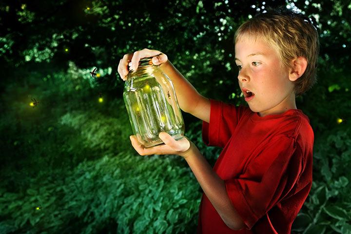 Create A Firefly Jar