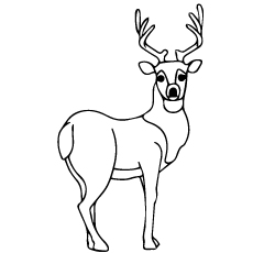 7Top 20 Deer Coloring Coloring Pages For Your Little Ones Ones