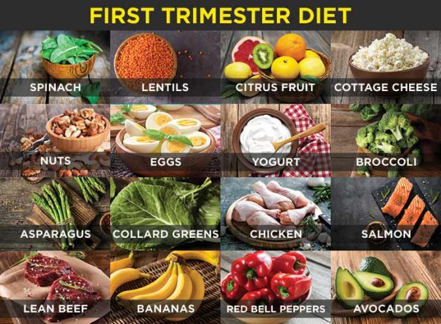 Foods To Eat When Pregnant First Trimester Diet-9776