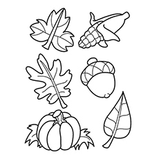 Acorns and Leaves Printable Coloring Page