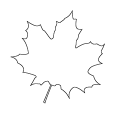 photograph about Leaves Coloring Pages Printable called Supreme 20 Totally free Printable Leaf Coloring Webpages On line