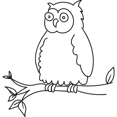Oriental Bay Owl Coloring Page Printable