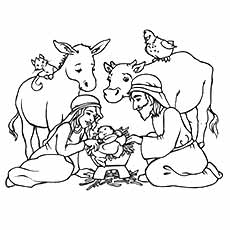 nativity coloring pages ox and donkey - Nativity Coloring Pages Printable