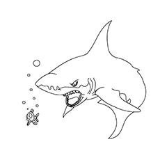 Scary-Shark-17