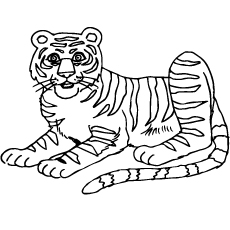 Coloring Sheet Of South China Tiger