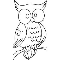 Large Eye Owl Coloring Page for Kids