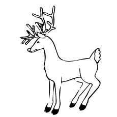 Deer Eyes Coloring Page