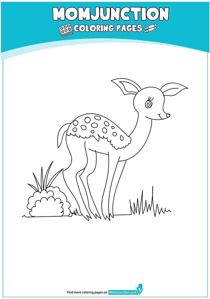 The-line-art-deer-16