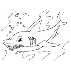 Whale Shark Coloring Sheet Free Printable