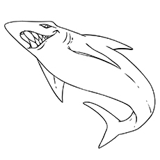 Free Printable White Tip Reef Shark Coloring Sheet