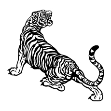 Tiger Black And White Coloring Pages to Print Free