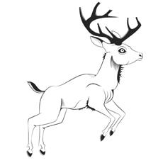Vintage Deer Looks Beautiful to Color