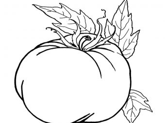 Top 24 Pumpkin Coloring Pages For Your Little Ones