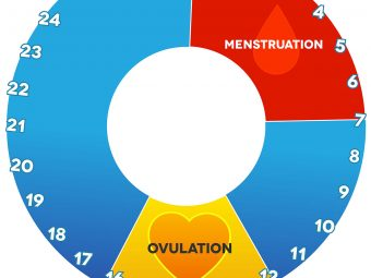 Cervical Mucus And Ovulation - Everything You Need To Know