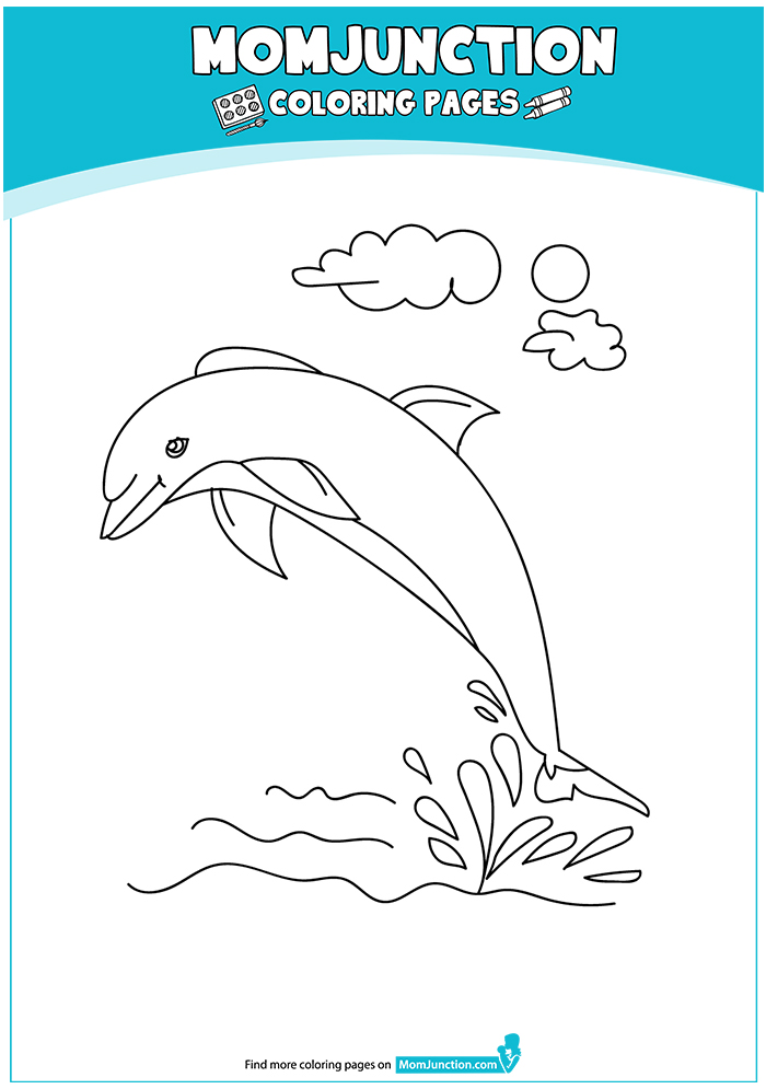 Clymene-Dolphin-16