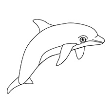 coloring page hectors dolphin - Cute Dolphin Coloring Pages