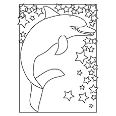 Coloring Sheet of Indo Pacific Bottlenose Dolphin
