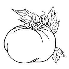 One Big Pumpkin Coloring Pages