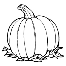 Pumpkin Picture to Color