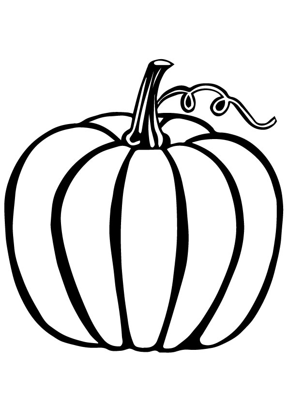Pumpkin-The-Vegetable