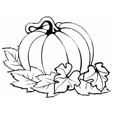 Pumpkin-With-Leaves
