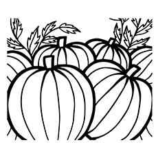 Pumpkins to Color for Kids