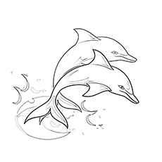 Soaring Two Dolphin Coloring Sheet