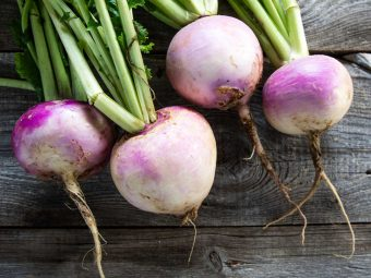 Turnip For Babies: Right Age, Benefits And Recipes To Try