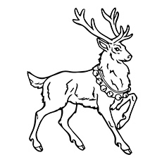 Top 20 Free Printable Reindeer Coloring Pages Online