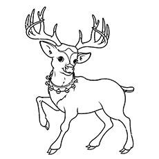 A-reindeer-rudolf-coloring-page