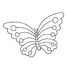 Coloring Pages Of Animals Tortoise Butterfly