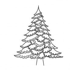 Christmas Tree Contour