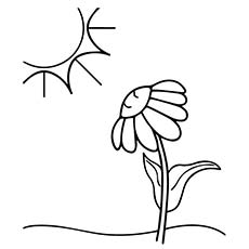 flower and sun mid summer picture to color - Printable Coloring Pages For Toddlers